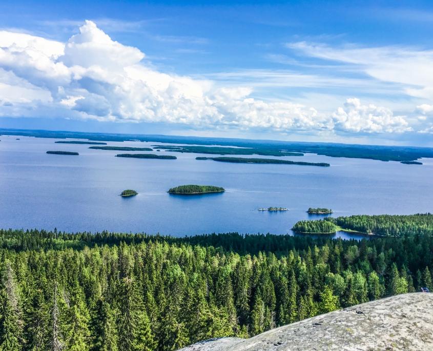 Kolin kansallispuisto Lieksassa. Tekemistä Kolilla.