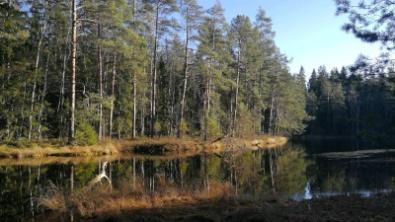 Hyvinkää tarjoaa paljon tekemistä lapsiperheille ja aikuisille. Uusimaa, upeimmat luontokohteet.